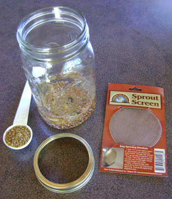 Alfalfa seeds, jar, screen, ring